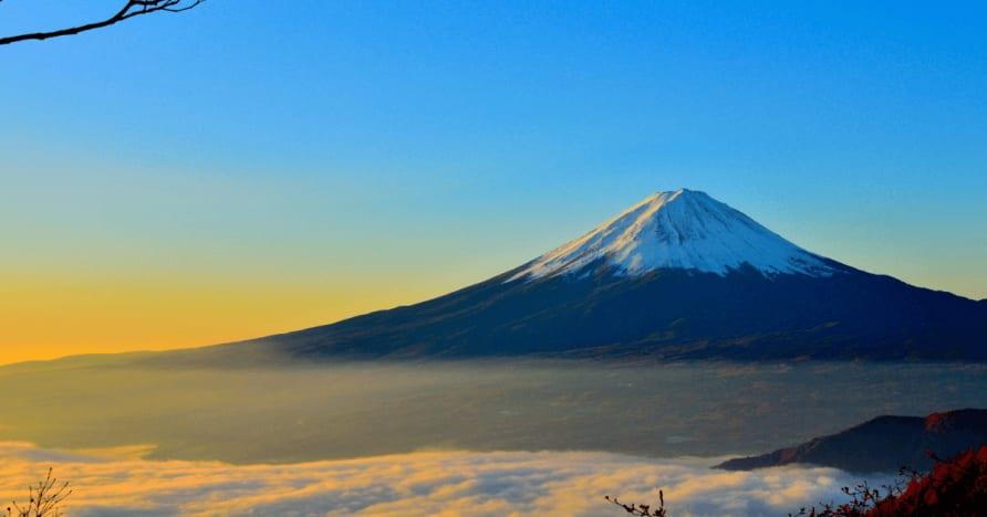 اليابان ترى الضرائب المقتطعة من الأرباح اجانب