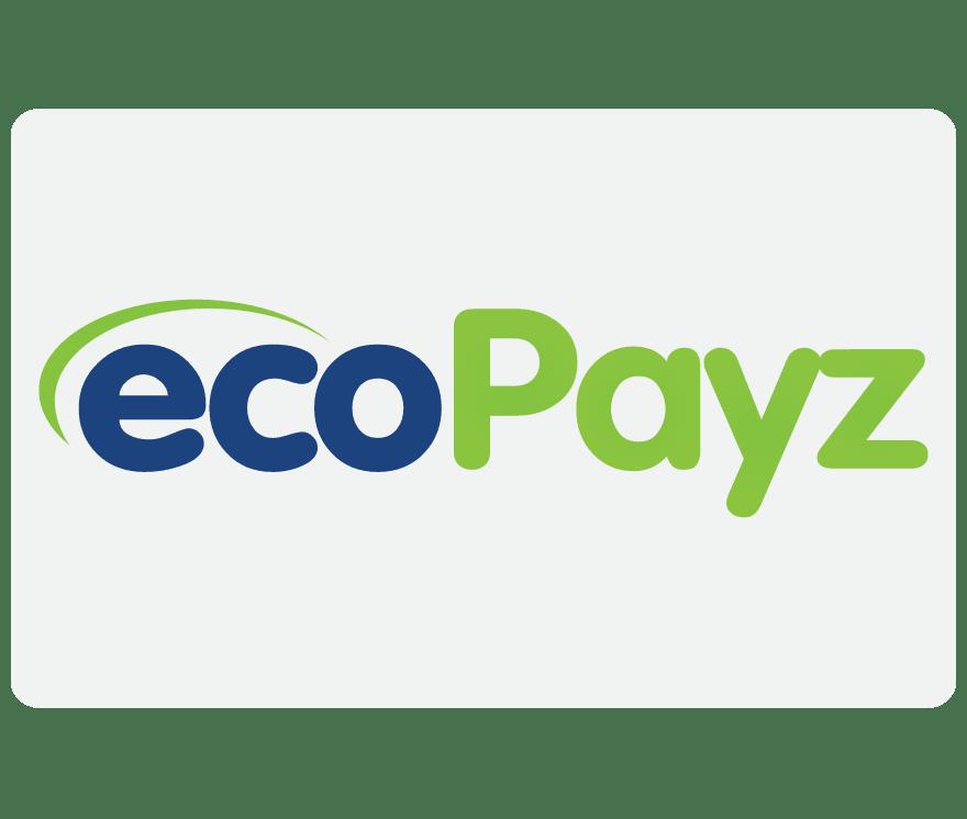 كازينو عبر الإنترنت EcoPayz