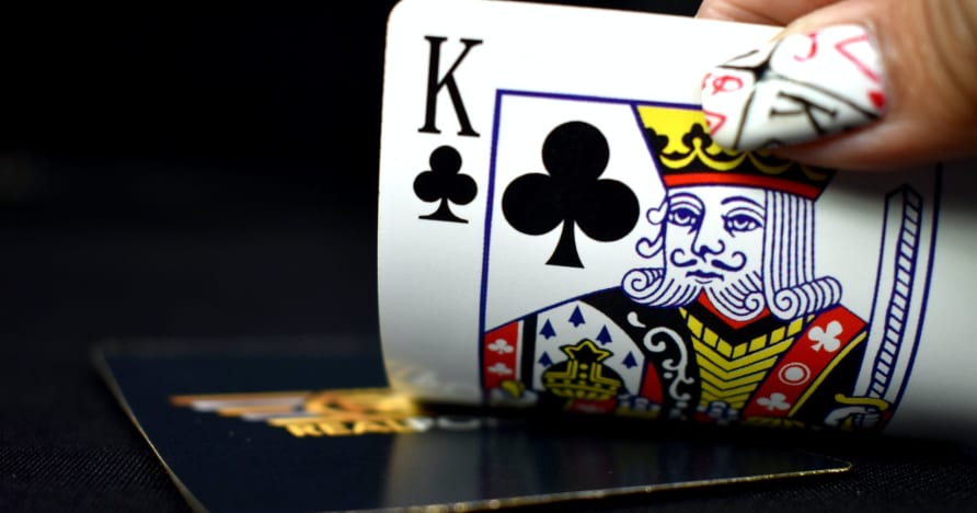 أنواع المقامرين